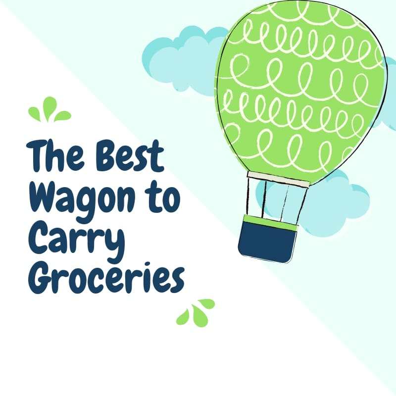 best Wagon to Carry Groceries
