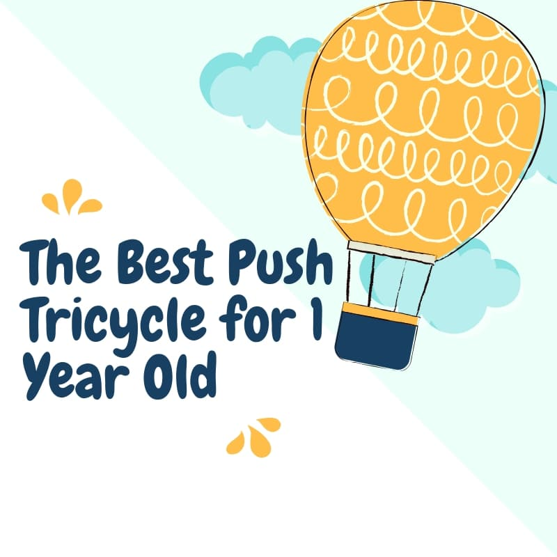 Best Push Tricycle for 1 Year Old