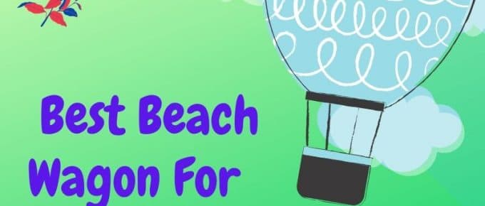 The 5 Best Beach Wagon For Toddlers